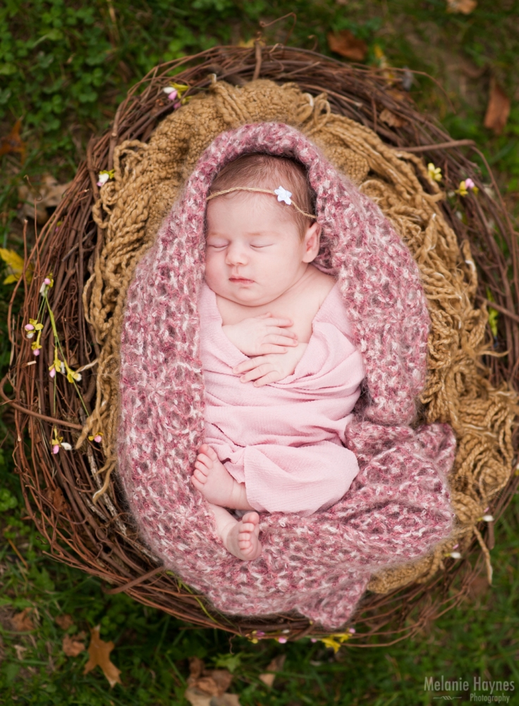 mhaynesphoto_newbornd1