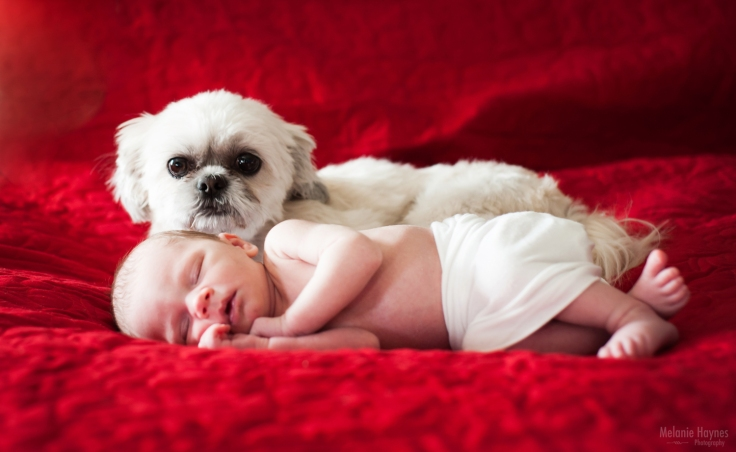 mhaynesphoto_newbornphotography_b1